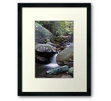 Jones Gap State Park  Framed Print