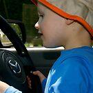 I'll Drive!! by Lou Wilson