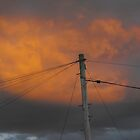 the power lines by perggals