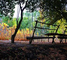 Peaceful benches - Autumn Sunset by Heber Manoni