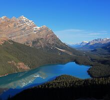 Peyto Lake Reflections by Cameron B
