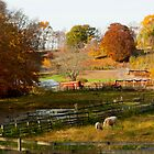 Fall Farm by Tom Allen