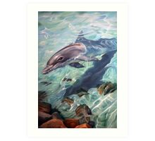 """Inquisitive - The Bottlenose Dolphin"" Art Print"