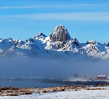 Winter mood in Norway by Frank Olsen