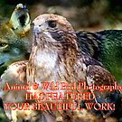 ***ANIMALS Plus wild BIRD Photography! (NO DOGS or CATS)