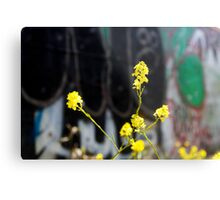 urban revitalization Metal Print