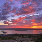 Summer Sunrise, Cadillac Mountain by Stephen Vecchiotti