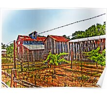 Sisterdale Winery Poster