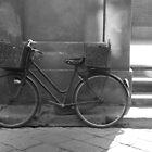 Bicycle in Florence by Hollyis