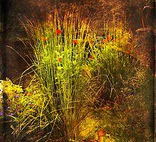 Forbidden Garden by Gouzelka