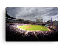 Minnesota Twins Canvas Print