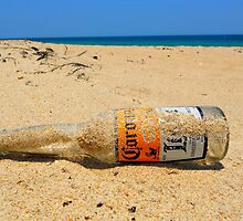 Hard day at the Beach by Michelle Hamilton