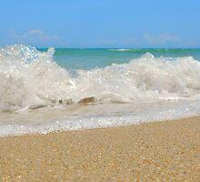 Ocean Motion by Michelle Hamilton