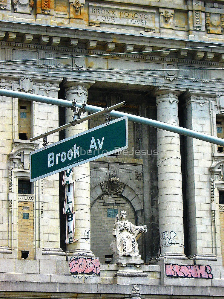 Bronx Justice on Brook Avenue by Alberto  DeJesus