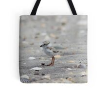 Piping Plover - New Chick Tote Bag