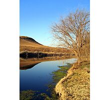 Wilgeriver, Gauteng, South Africa during winter. Photographic Print