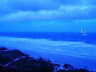 Sand & Sea by NatureGreeting Cards ©ccwri