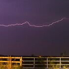 Pasture lightning by Larry  Grayam