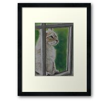 Let Me In Framed Print