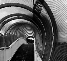 Tunnel of Wire by Catherine Davis