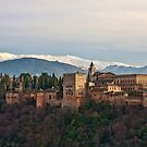 The Alhambra by Beautiful Amnesia