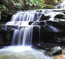 Leura Cascades by Adrian Ross-New