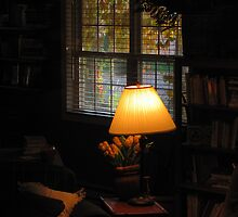 """Lamp in My Library Window"" by dfrahm"