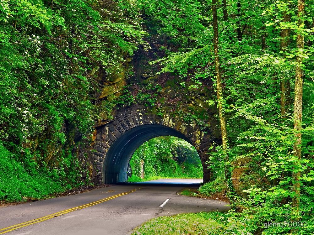 Tunnel to Cades Cove by Glenn Cecero