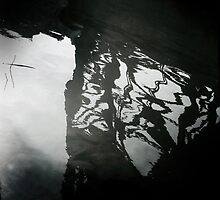 Under the Bridge by Jared Plock