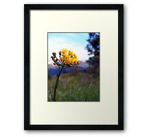 The Glory of Spring Framed Print