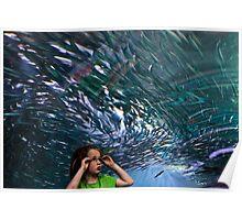 Aquarium Candid Poster