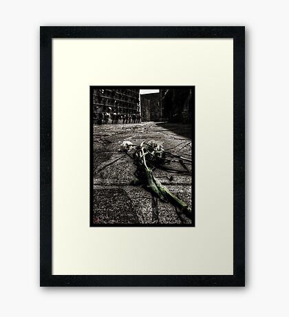 Dying Among The Dead Framed Print