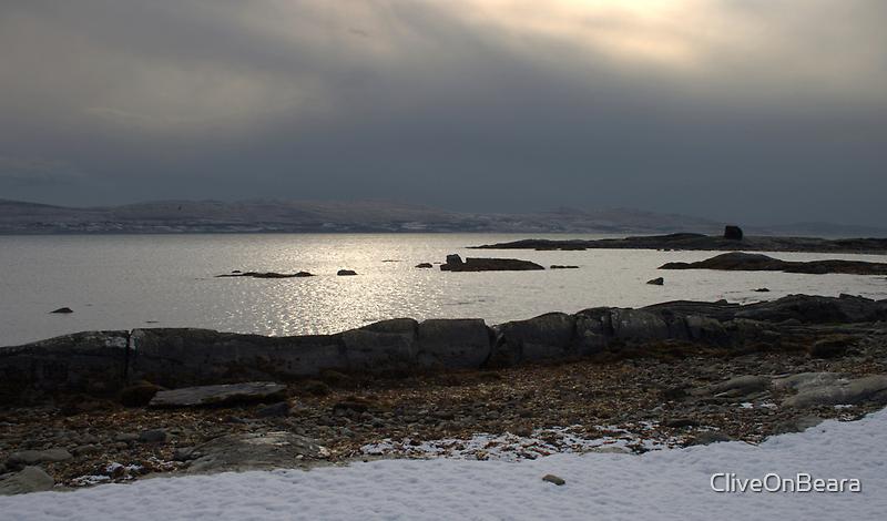 Cold Cormorant by CliveOnBeara