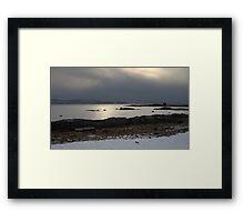 Cold Cormorant Framed Print