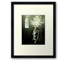 Un Ave del Paraíso Framed Print