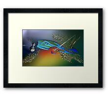 The bait and the last tuna Framed Print