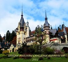 Unique building challenge runners up 2011banner by su2anne