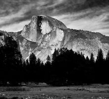 Half Dome by Cat Connor