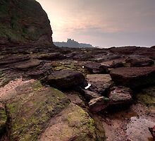 Tantallon Castle, East Lothian by Christopher Cullen
