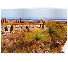 110619 Lesurue National Park Grasstrees Poster