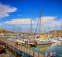 The Harbour by wallarooimages