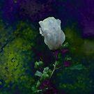 pixel rose of sharon... by dabadac