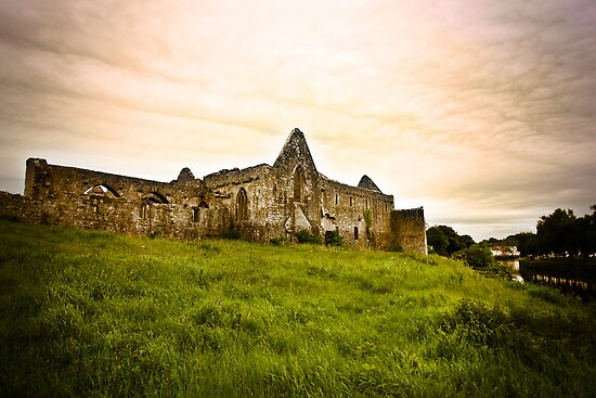 Askeaton Friary by Polly x