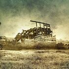 Abandoned by Trevor Kersley