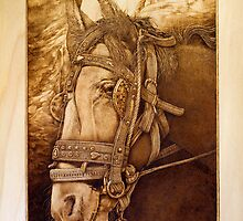 'Horse at Petra' Pyrography on hoop pine ply by DavidStanley