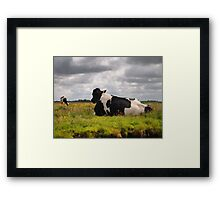 Landscape with 2 cows Framed Print