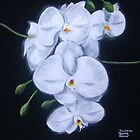 Brent's Orchid by Alexander Beedy
