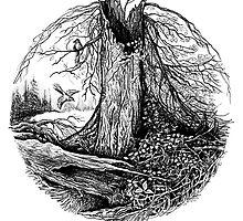 Old tree by Natalie Berman