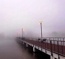 One Foggy Morning by Cynthia Broomfield