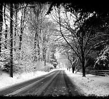 "Driveby Shooting No. 18 Wintery Drive by Christine ""Xine"" Segalas"